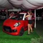 Wprowadzenie na rynek nowej marki samochodowej LIGIER